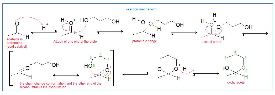 cyclic acetal reaction mechanism