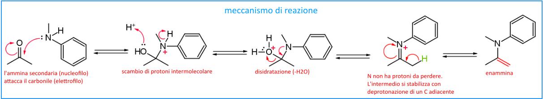 meccanismo di sintesi enammine