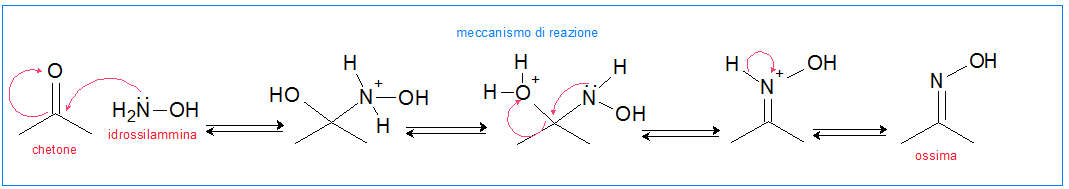 ossima meccanismo di reazione
