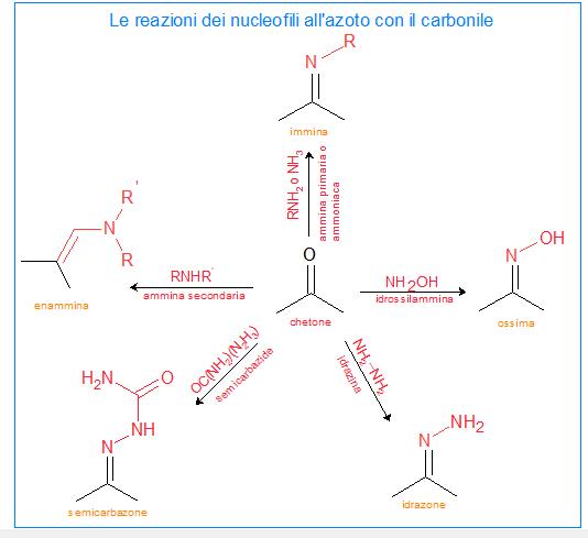 reazioni dei nucleofili all'azoto
