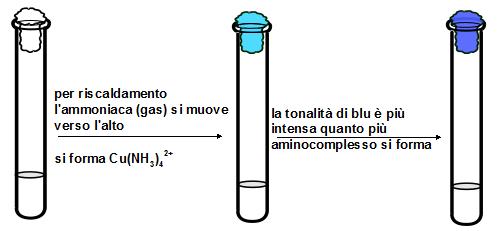 riconoscimento ione ammonio