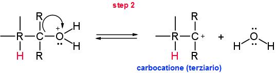 meccanismo di disidratazione parte 2