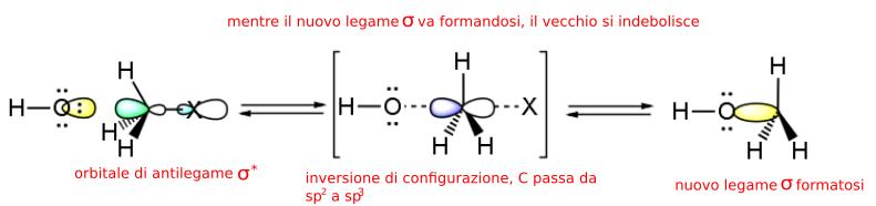 orbitali molecolari in una sn2