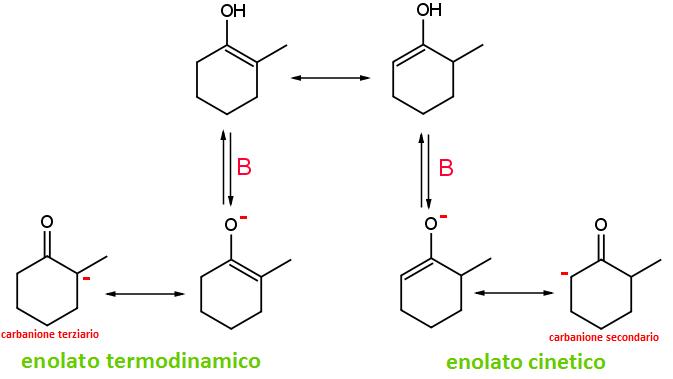 enolato cinetico vs enolato termodinamico