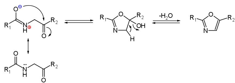 meccanismo di reazione sintesi ossazolo