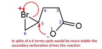 sintesi-di-bromo-lattoni