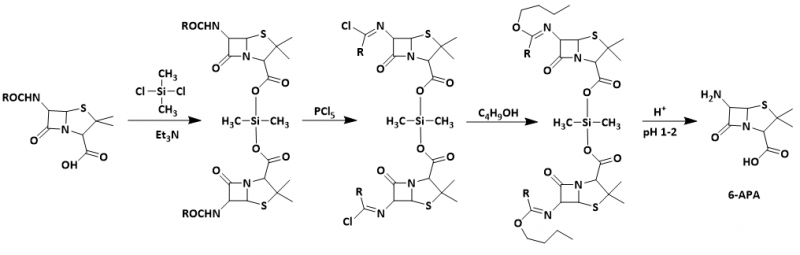 sintesi chimica del 6 apa brainyresort